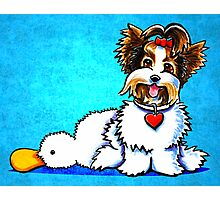 Biewer Yorkie with Duck Toy Photographic Print