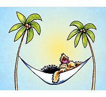 Yorkie in Palm Tree Hammock Photographic Print