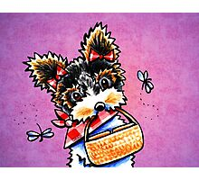 Biewer Yorkie with Picnic Basket Purple Photographic Print