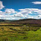 Arkengarthdale moor by neil sturgeon