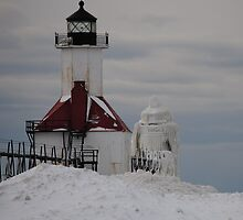 St Joseph North Pier Lighthouse - 30 by Debbie Mueller