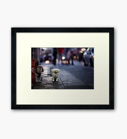 happy to pose Framed Print