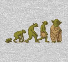 Yoda's evolution by McDraw