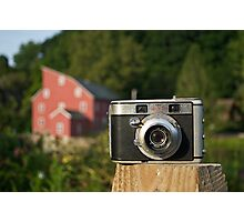 Signet on Red Photographic Print