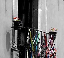 Allende by Ceci Torri