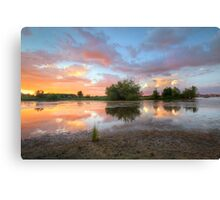 SwampLight Canvas Print