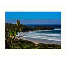 Kilallea Beach, NSW Australia Art Print