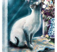 """Faery at my Window"" by Robin Pushe'e"