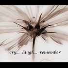 DAISY (cry, laugh, remember) by Fran James
