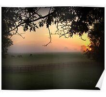 Horse Farm Morning II Poster