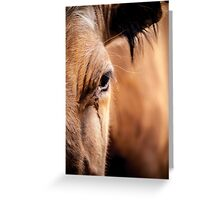 Bovine Greeting Card