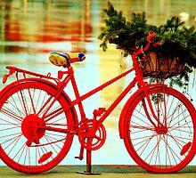 Bicycle by Wojtek  Jaskiewicz