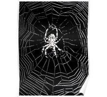 Twilight Zone Spider Poster