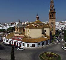Carmona, Andalusia by wiggyofipswich