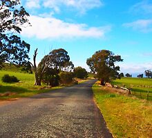 Along the country road, West Pyalong VIC Australia by Margaret Morgan (Watkins)