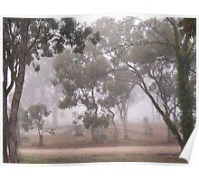 Foggy Australian Bush Poster