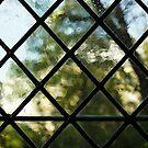 Medieval Window, Sunny Garden Outside by Georgia Mizuleva
