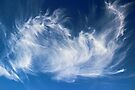 Mystical Cloud Formation by Avril Harris