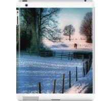 The Snow Fields iPad Case/Skin