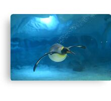 Penguin Blues Canvas Print