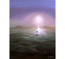 Seagulls in the mist Photographic Print