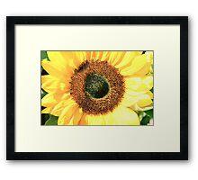 Some Flower! Framed Print