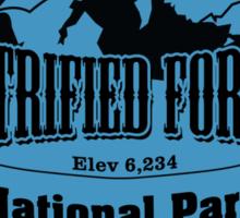 Petrified Forest National Park, Arizona Sticker
