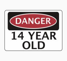 DANGER 14 YEAR OLD, FAKE FUNNY BIRTHDAY SAFETY SIGN by DangerSigns