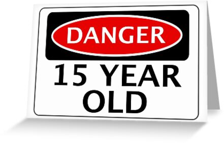 """DANGER 15 YEAR OLD, FAKE FUNNY BIRTHDAY SAFETY SIGN ..."