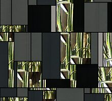 Cactus Garden Art Rectangles 7 by Christopher Johnson