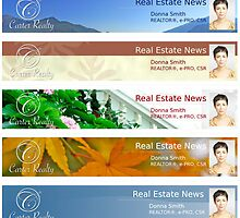 Real Estate Email Newsletters by bwilson1