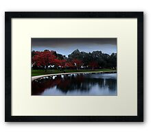 Erythrina Trees By The Lake  Framed Print