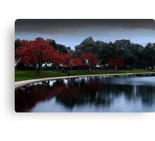 Erythrina Trees By The Lake  Canvas Print