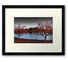 Erythrina Trees  Framed Print