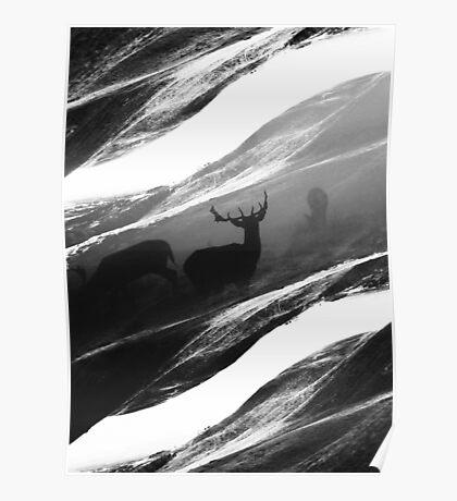 Oh Deer Black Poster