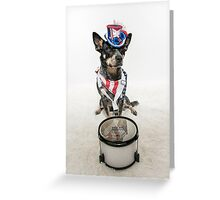 Patriotic Cattle Dog Drummer Greeting Card