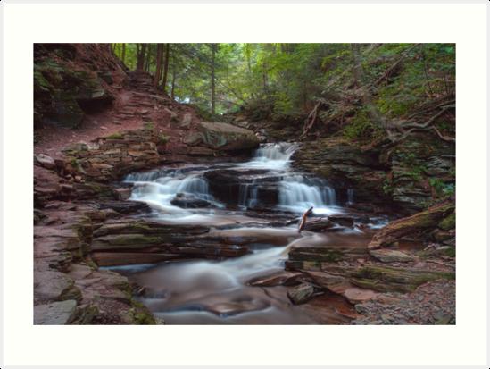 Seneca Falls in Summer Shade by Gene Walls
