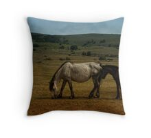 White Horse & Little Brown Foal Throw Pillow