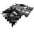 House Stark Black Worn by Greg Brooks