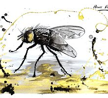 The Spectacular House Fly by The Ink Art of Nicholas Swift
