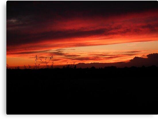 Festival Sunset by Hannah Saveall
