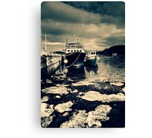 Icy Water Canvas Print