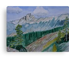 The Burgess Shale Canvas Print