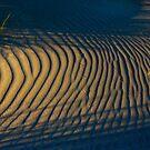 Tracks in Sand by pablosvista2