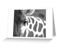 Lux Lashes II Greeting Card