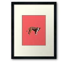 Poppy Red Pup Framed Print