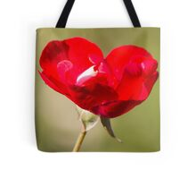 rose after the rain in the garden Tote Bag