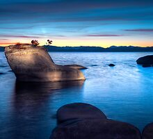 Lake Tahoe Bonsai Rock by Dianne Phelps