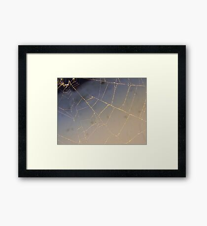 Golden Web Framed Print