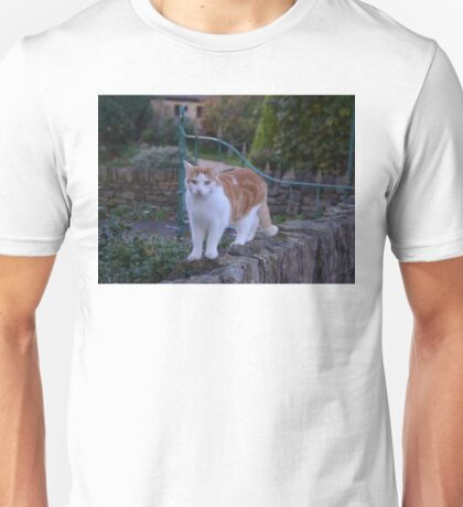 Ginger And White Cat Unisex T-Shirt